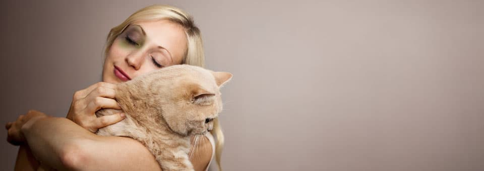 To Protect Battered Women, You Have to Protect Their Pets